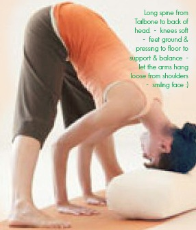 supported wide leg forward bend with text MyYogaMoves.com